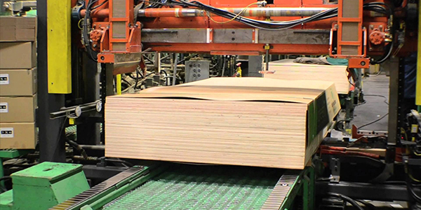 Timber - based industries